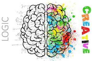 脳科学の勉強におすすめの本10選!【2020年】