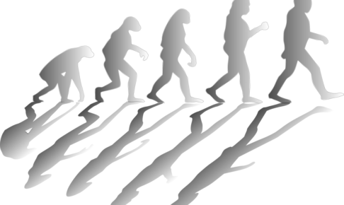 進化心理学の勉強におすすめの本9選!【2020年】